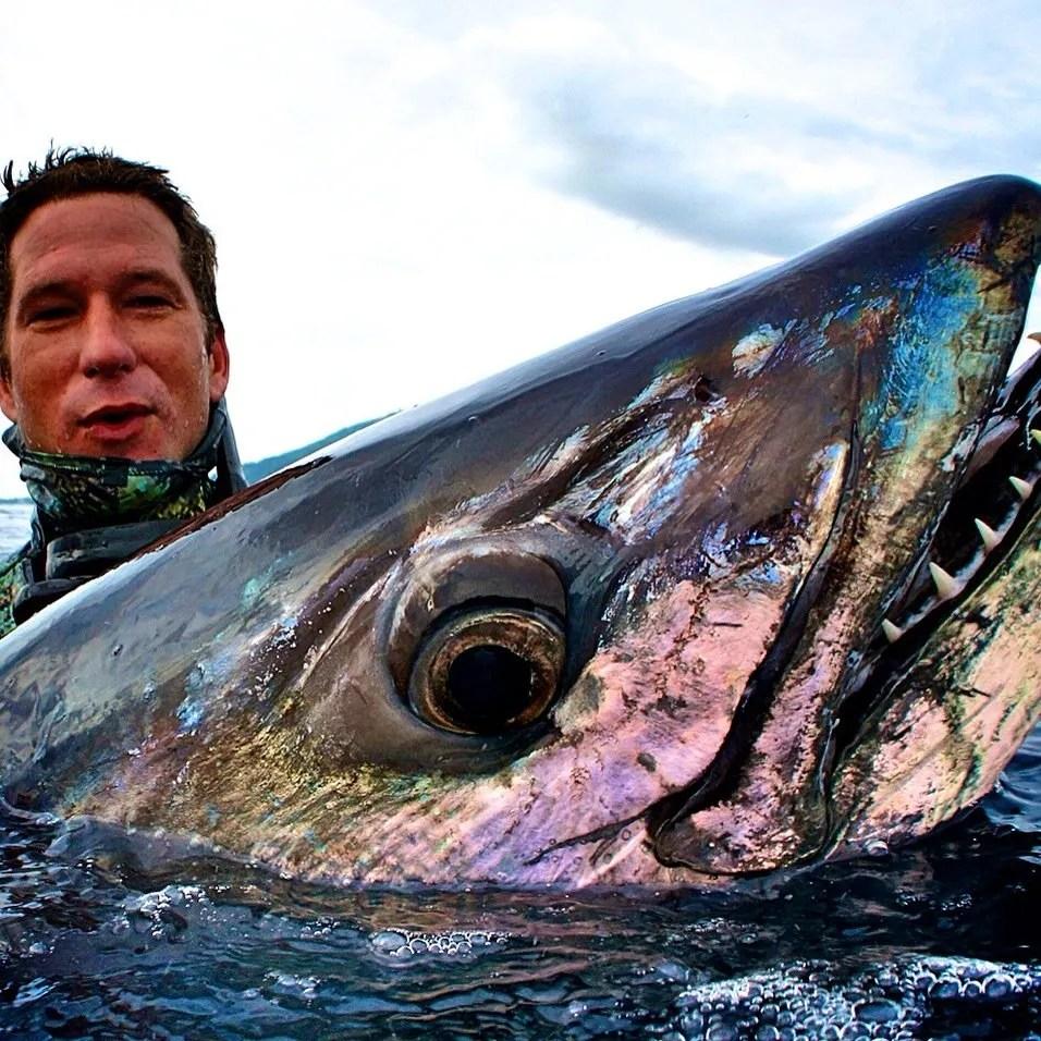 Big Indonesia dog tooth tuna. Cameron Kirkconnell