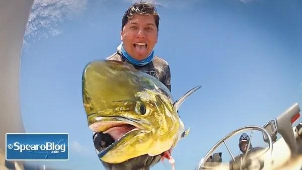 Spearfishing MahiMahi. Roman Castro Interview