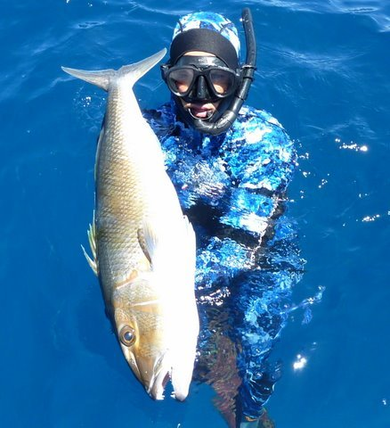 Tanc Sade spearfishing green jobfish