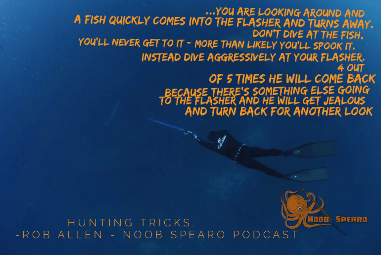 Rob Allen Spearfishing hunting tips