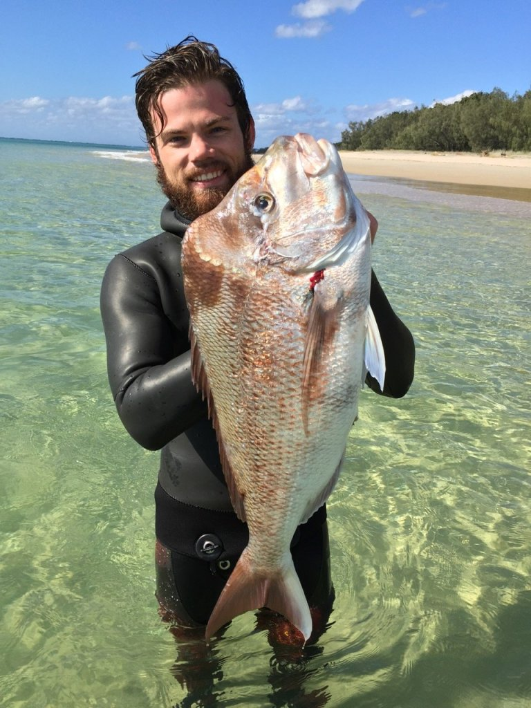 Spearfishing Snapper