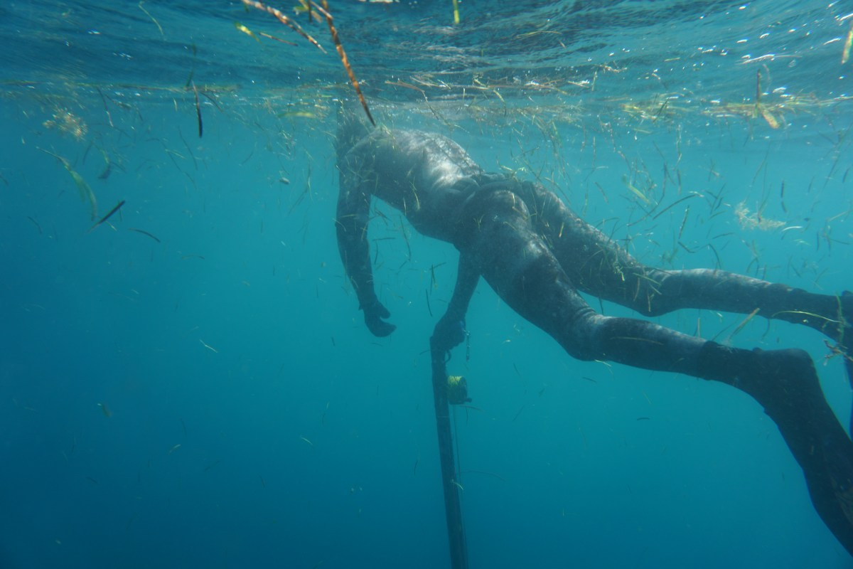 Relaxing on the surface. Don't rush, Don't be rushed! Spearfishing Buddy Protocol