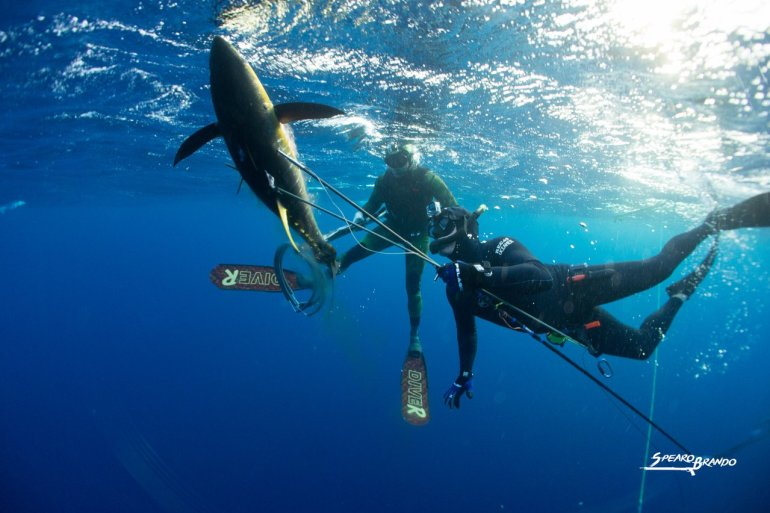 Interview with Brandon Hendrickson expereinced spearfisherman