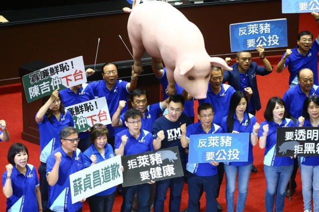 國民黨反對含瘦肉精美豬進口11月22日要響應「秋鬥」,盼號召萬人上凱道。圖/聯合報系資料照片