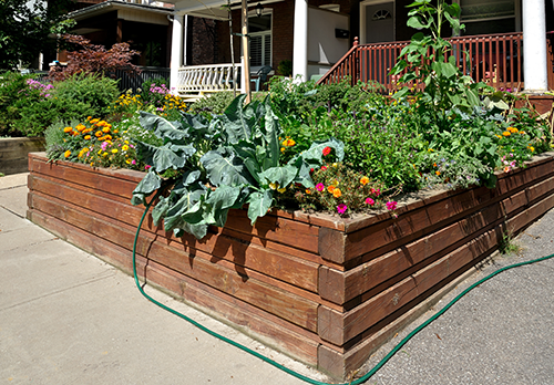 Image result for raised bed gardening tricks
