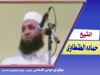الشيخ حماده الطنطاوى