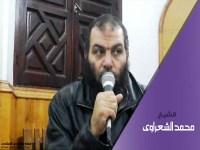 الشيخ محمد الشعراوى