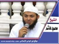 الشيخ محمود هاشم