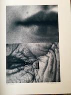 2 Barbro Hedström - Gener - Fotoprint
