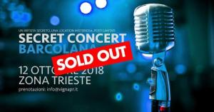 secret concert