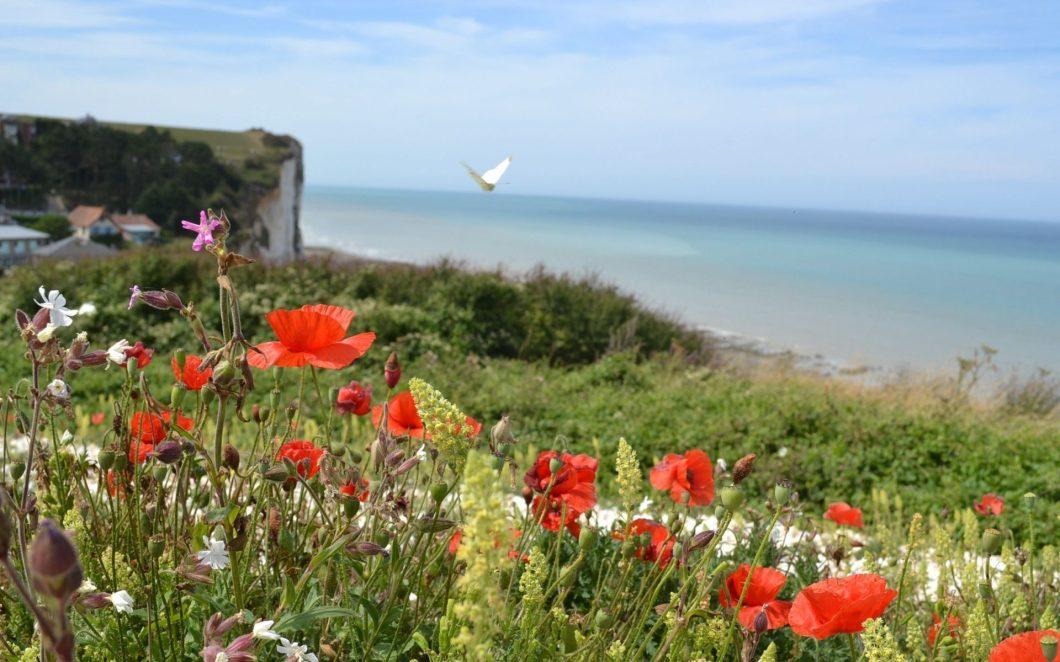 Malerische Baie de Somme, eine der schönsten Buchten der Welt
