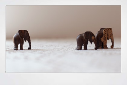 Poster elephants walking #16009 (2)-min
