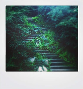 Card Green stairs #20008-min