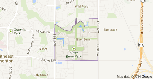 Silver Berry Edmonton Homes For Sale