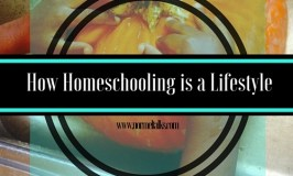 Homeschooling Diaries: Homeschooling is a Lifestyle