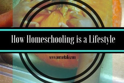 homeschool is a lifestyle