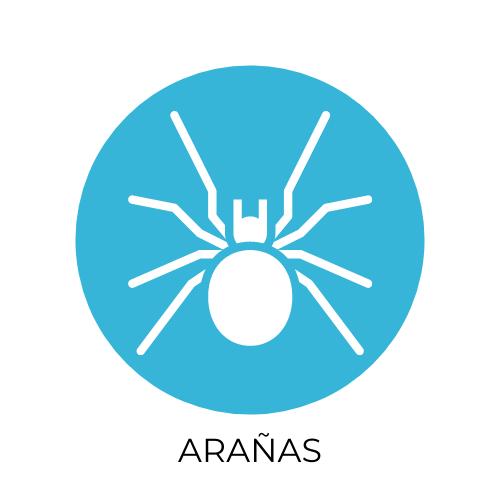 desinsectacion arañás