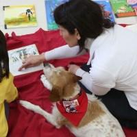 El CEIP Miguel de Cervantes contará el próximo curso  con un aula para alumnos con trastornos del espectro autista