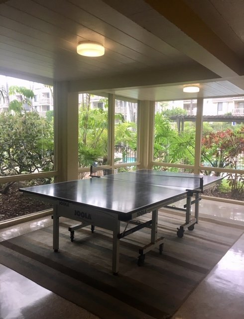 C103 ping pong table in club house