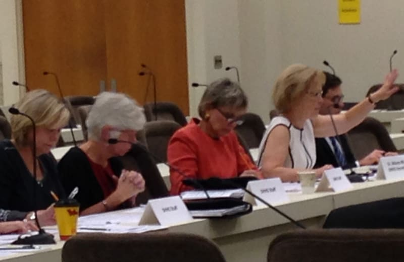 HHS Secretary Aldona Wos (in white) makes the case for improving the state's medical examiner system.