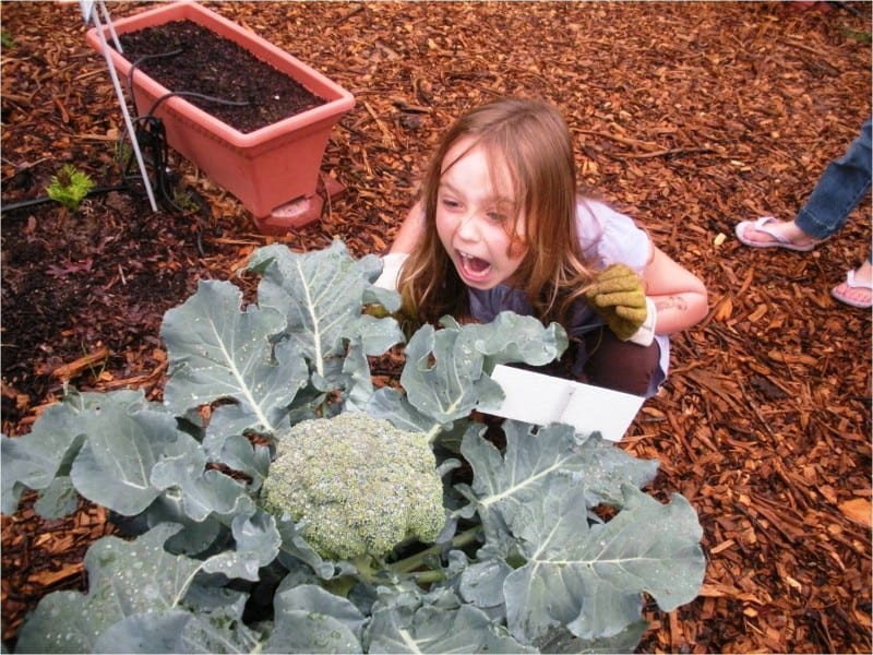 Makayla Lewis, daughter of Megan Lewis, plays with some broccoli.