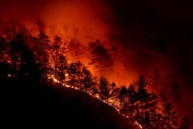 The Chestnut Knob Fire started on Sunday November 6, 2016 at 8-00 am in South Mountain State park 10 miles south of Morganton, NC.