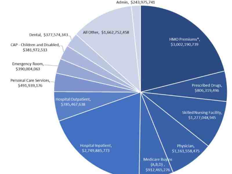 shows a pie chart of what the 14.2 billion medicaid dprogram costs.