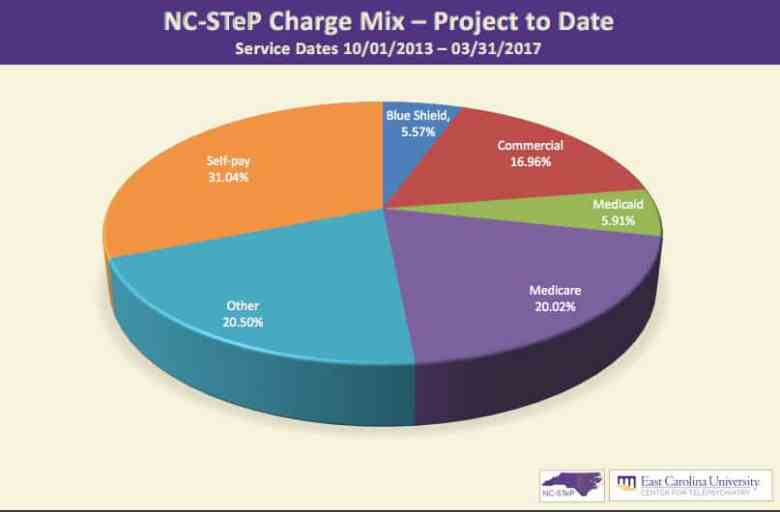 pie chart showing revenue streams for the program