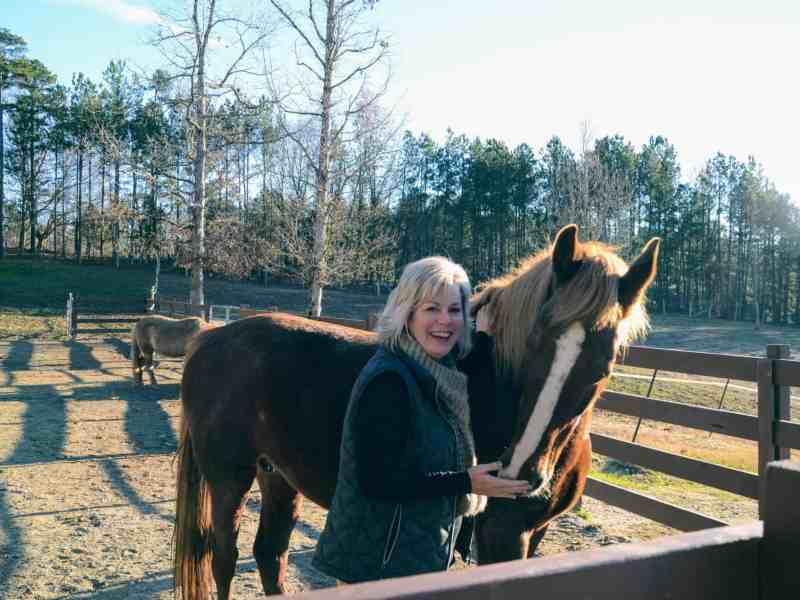 A woman hugs a horse