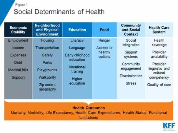 chart shows categories of social determinants of health