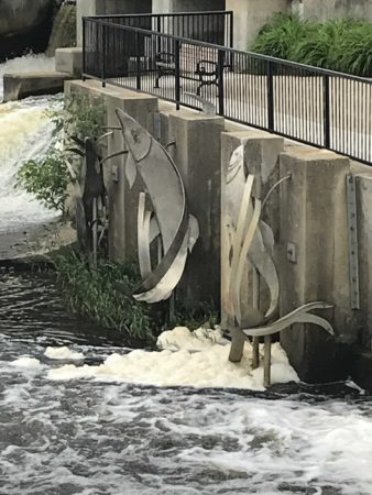 foam created by the presence of PFAS in the water of the Rogue River, near a sculpture