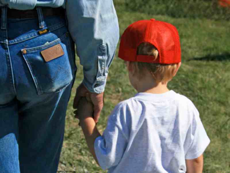 From behind, shows a man holding the hand of a little boy. Whether this is a parent or a foster parent is unknown, but the child appears calm and cared for.