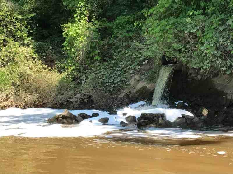 Water pouring out of a pipe along the Yadkin-Pee Dee River may be a source of PFAS to the river ecosystem. Photo credit: N.C. State University