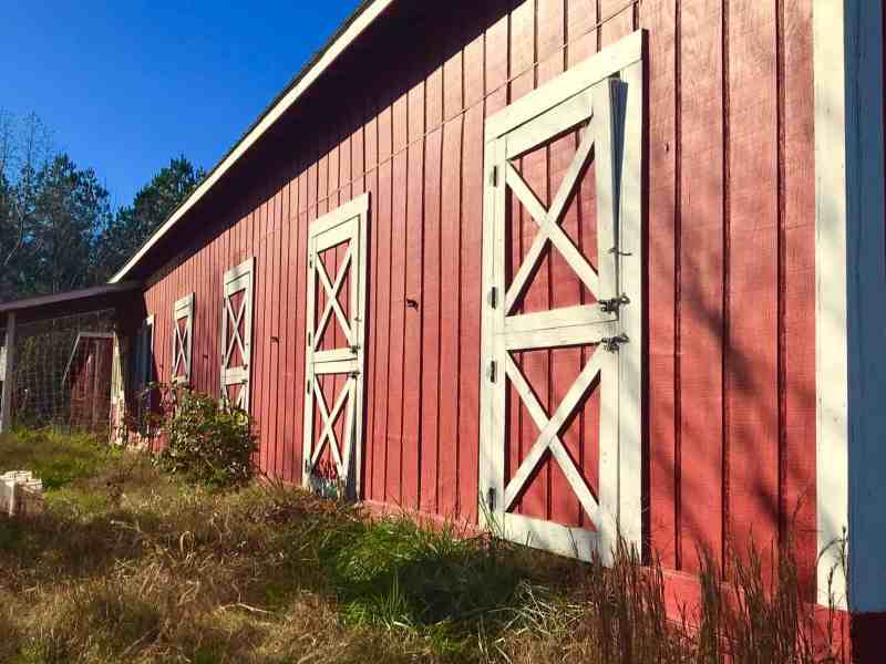 Red barn with white trim on a clear blue day