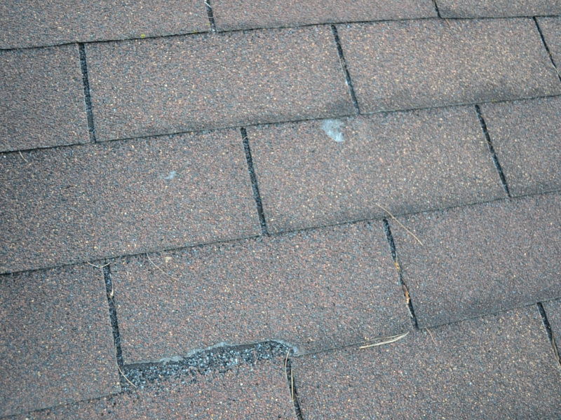 roof problems2