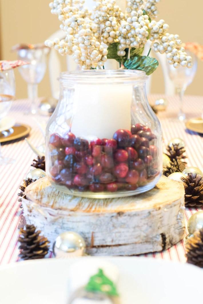 close-up-cranberry-vase