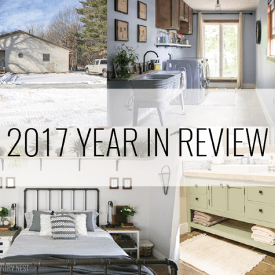 North Country Nest: 2017 Year in Review