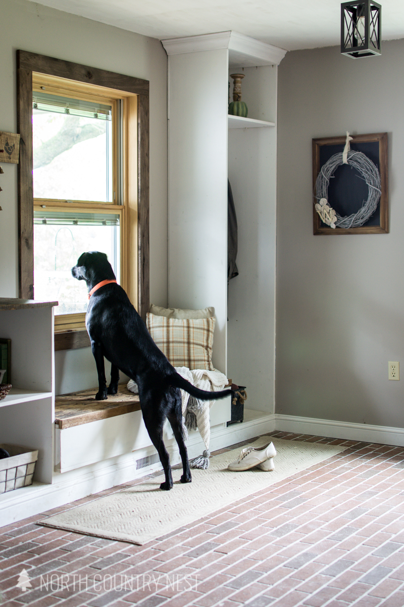 fall entryway with black lab