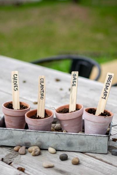 DIY herb garden on wood table