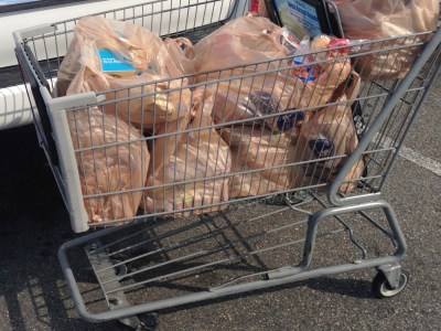 Cuomo signs plastic bag ban on Earth Day