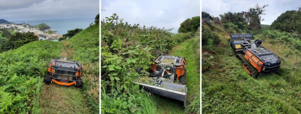 Hedges Gardens and Grounds Management Ilfracombe
