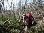 Maine Appalachian Trail hike on Spaulding Mountain