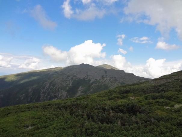 View of Mt. Adams from Mt. Jefferson Castle Trail