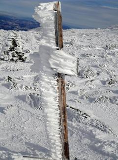 Rime ice on Mt. Adams
