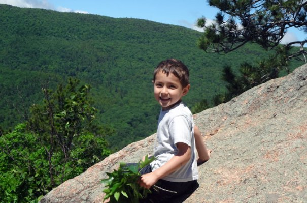 Kids will love climbing the outcropping. It helps to have a leaf sweep to brush away debris.