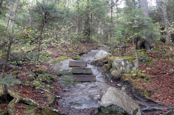 Moosilauke Beaver Brook Trail Stairs