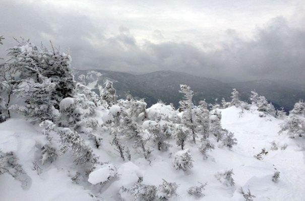Northwest Summit View
