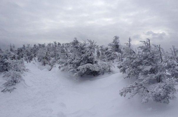 Cloudy Mt. Jackson Summit