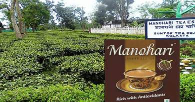 Assam: Manohari gold Tea breaks  all records of tea industry