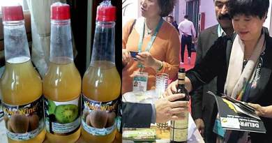 Arunachal's Kiwi Wine attracts Chinese visitors in Shanghai Expo